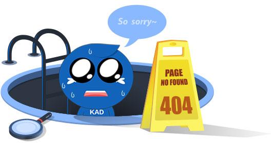 page no found 404