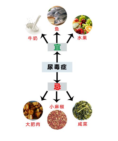 尿毒症的饮食禁忌