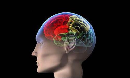 脑变性疾病